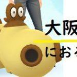 ヒポポタスの巣!大阪で確認できるスポット調べた