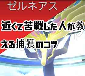 【ポケモンGO】ゼルネアス近すぎて戸惑うもGET!【捕獲のコツ】